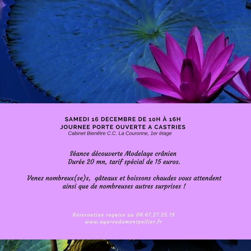 Journ 233 E Porte Ouverte 16 D 233 Cembre 2017 Massage Ayurv 233 Dique Montpellier Consultations