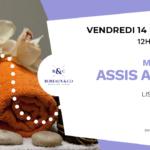 Massage assis Amma – Vendredi 14 février de 12h à 14h –Lisa Charlin Bureaux & Co Montpellier